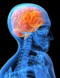 Traumatic Brain Injury Attorney / Lawyer — H.Q. Nguyen, Esq.